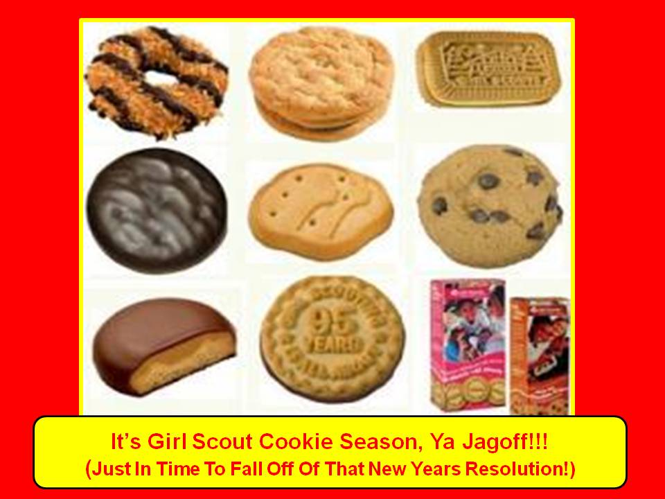 pin girl scout cookies 2013 order form michigan on pinterest
