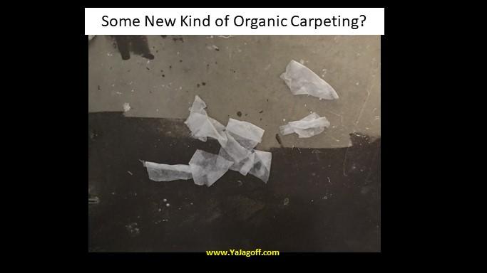 New Kind of Carpet